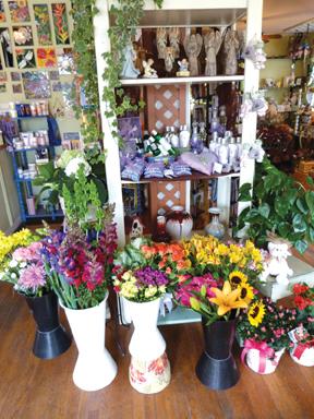 Adelaide_shop