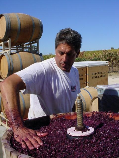 Owner Darren pressing grapes
