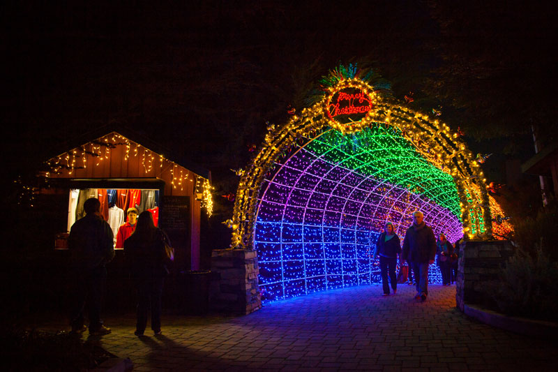 Xmas light tunnel at Cambria Christmas Market