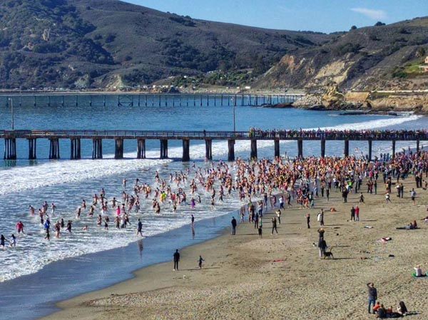 Slo Award Winners Polar Bear Plunge Avila Beach